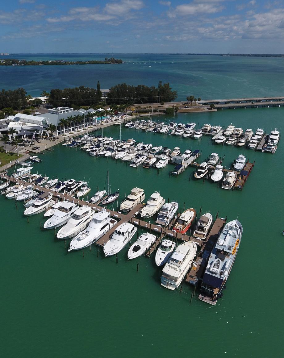 Sarasota Yacht Club >> Sarasota Yacht Club History